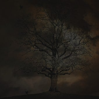 Spooky, Halloween, Scary, Mystery, Dark