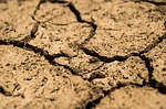 drought, aridity, dry