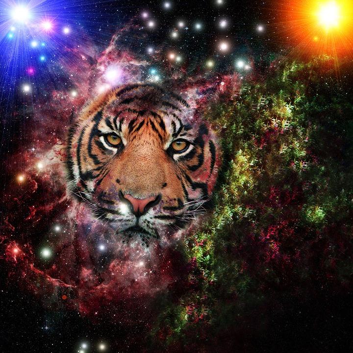 Galaxy Tiger Universe · Free Image On Pixabay
