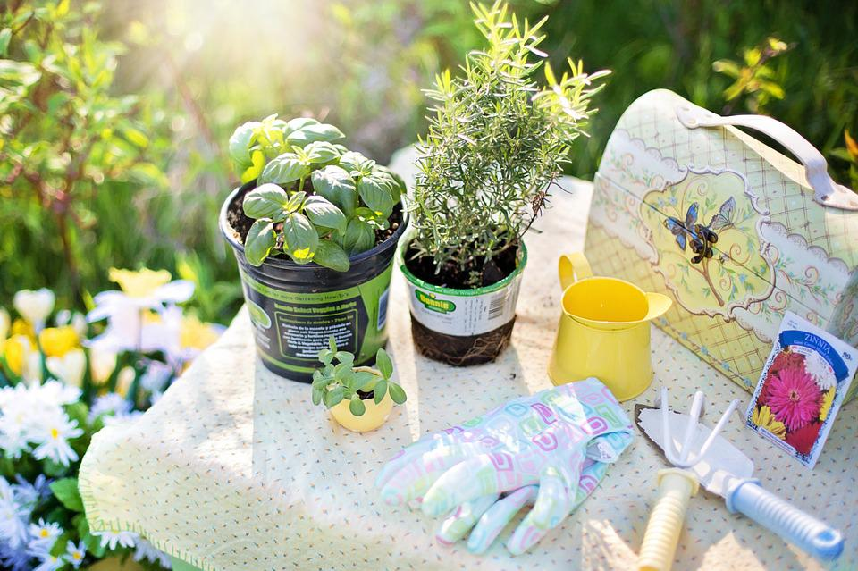 Garden Tools You Will Need