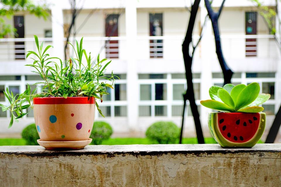 上海绿地梧桐院