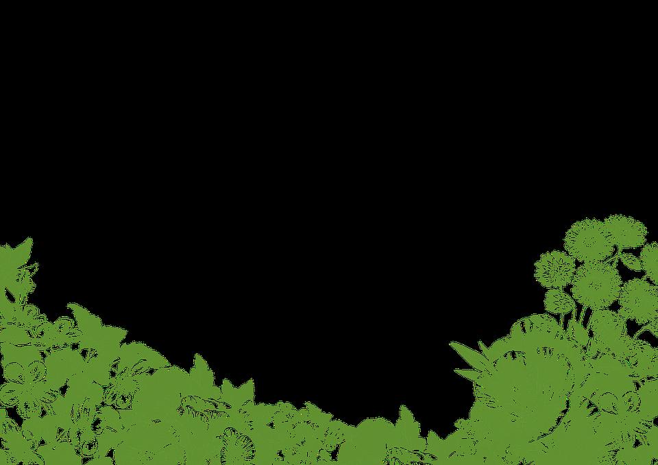 Illustration gratuite: Cadre, Floral, Vert, Fleurs - Image gratuite sur Pixabay - 783955