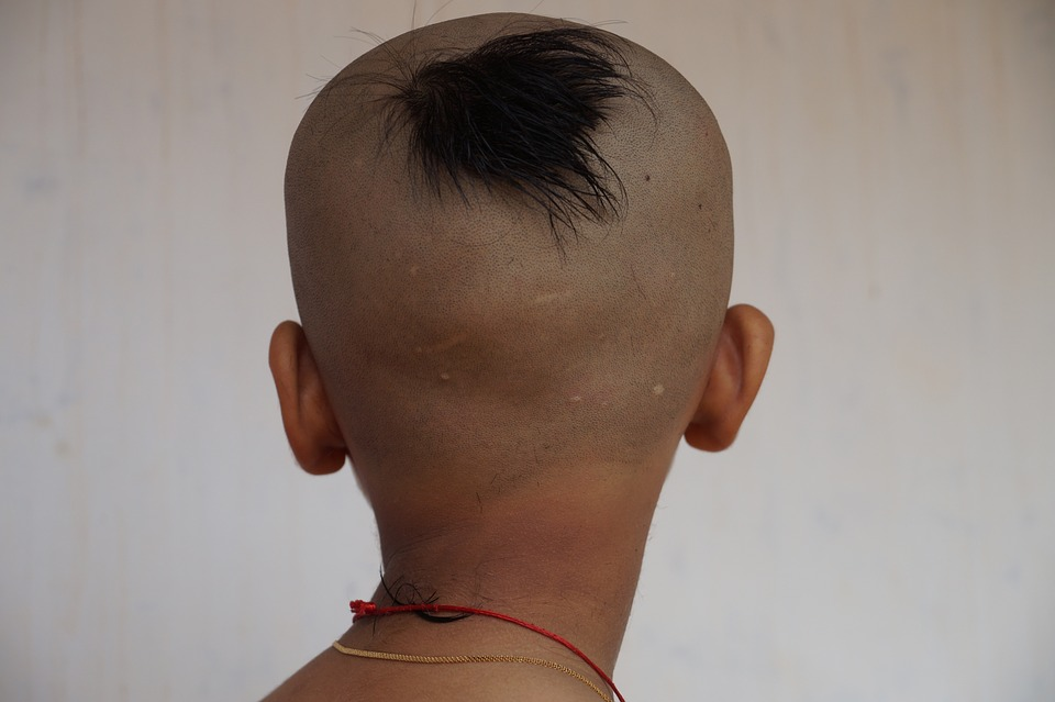 Hair Cut Images Pixabay Download Free Pictures
