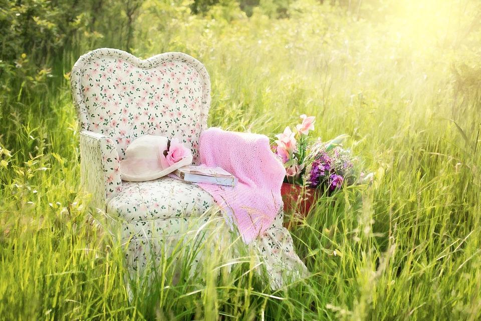 Stuhl Im Feld, Blumenstuhl, Rosa, Sommer, Natur