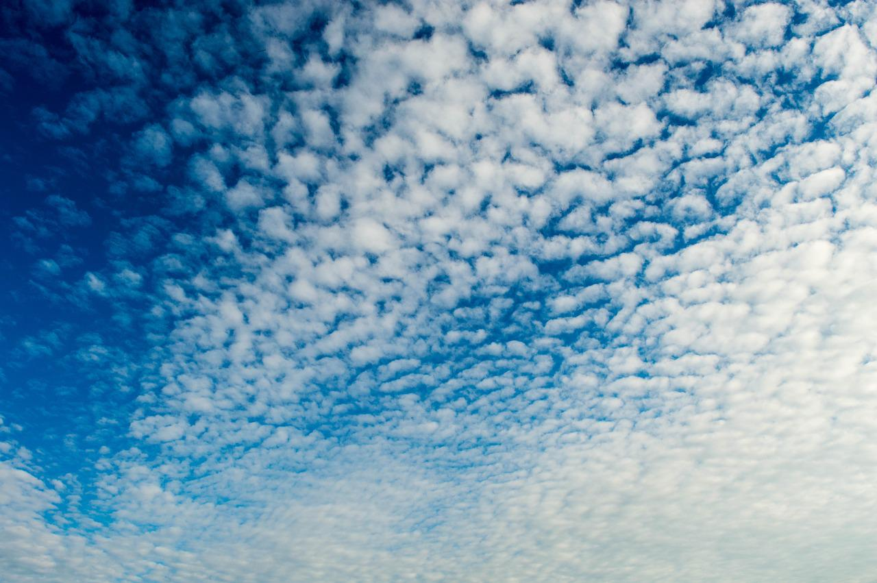 листья как на фото сделать синее небо картинки