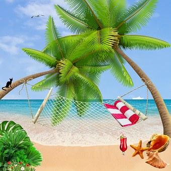 Zee, Palmbomen, Strand, Vakantie, Oceaan