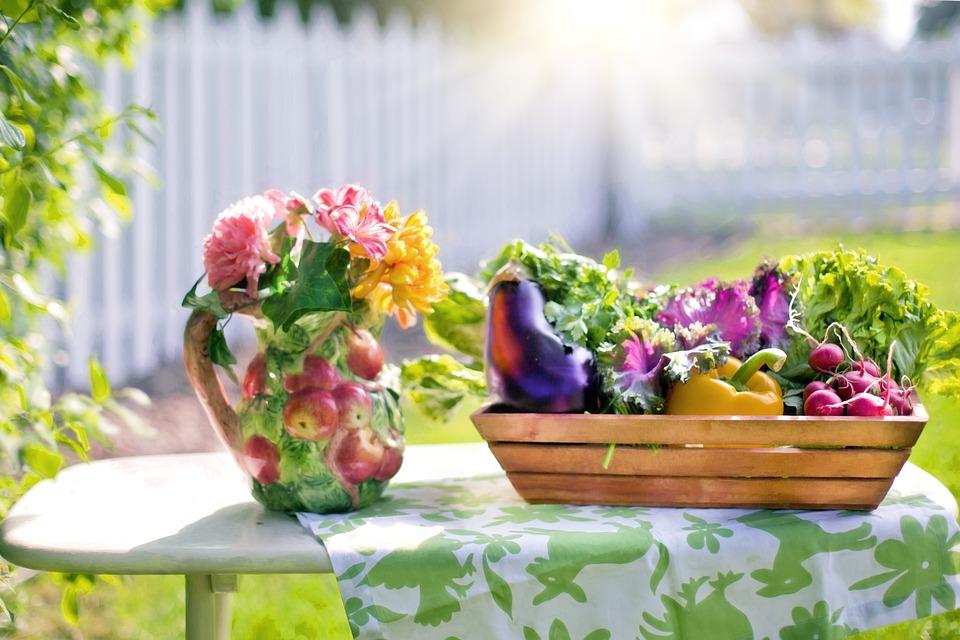 Free photo Vegetables Garden Harvest Free Image on Pixabay