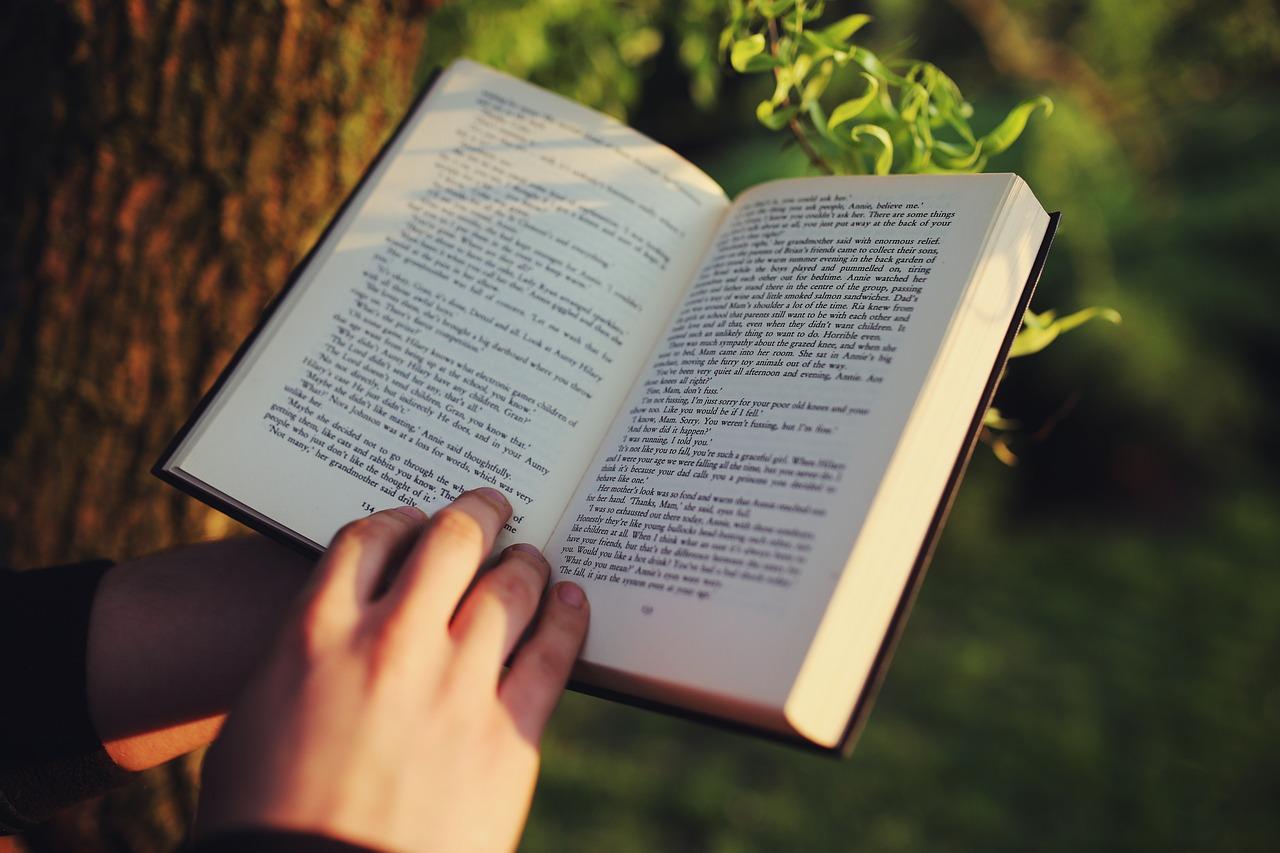 读,阅读,书,手