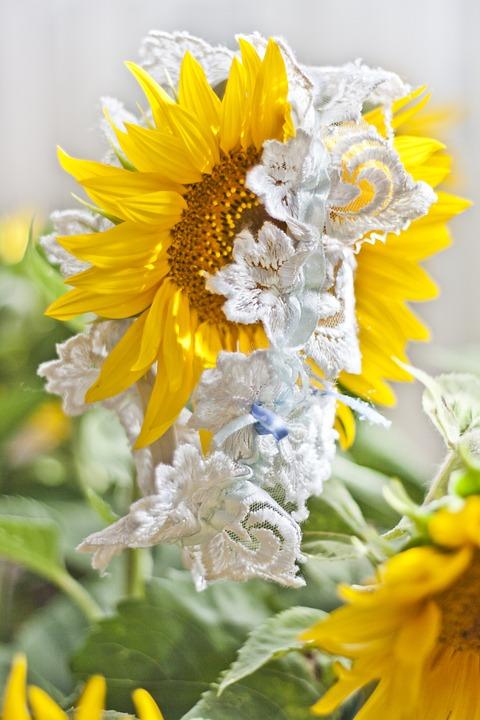 online store 22276 d3055 Strumpfband Hochzeit Sonnenblume - Kostenloses Foto auf Pixabay
