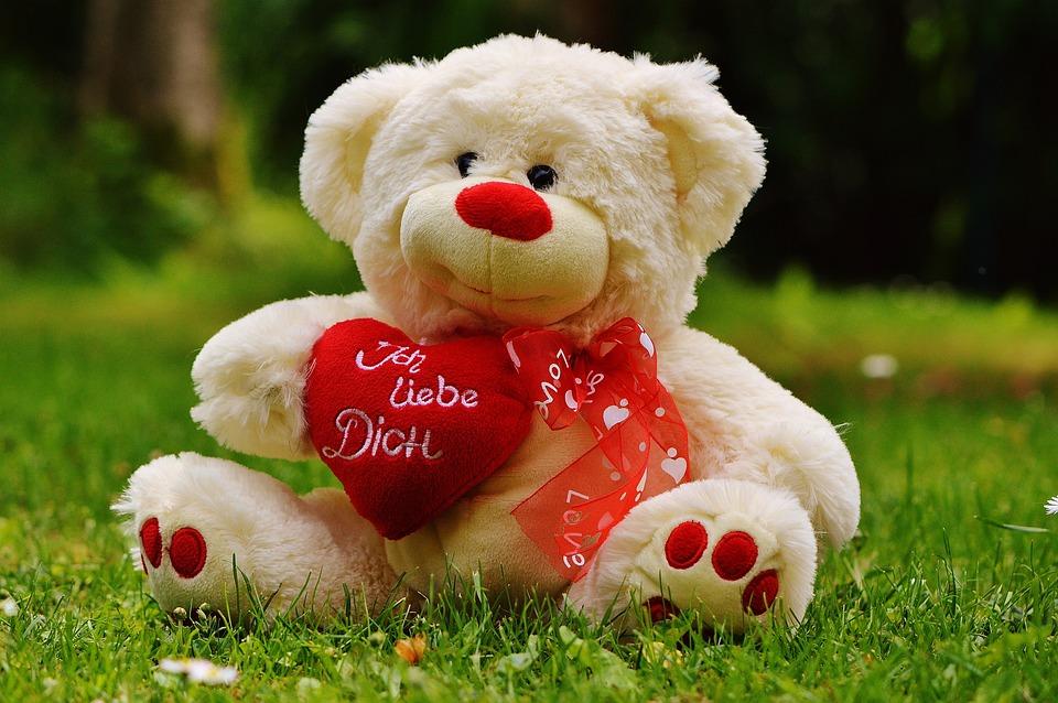 Kostenloses Foto: Teddybär, Valentinstag, Liebe, Bär - Kostenloses ...