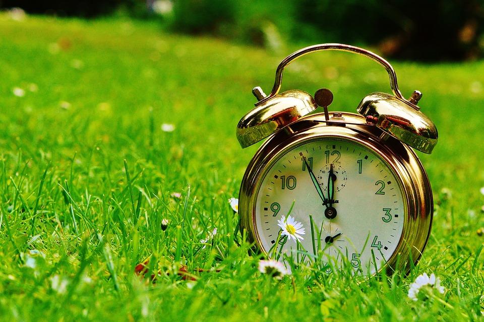 第十一小时, 灾难, 闹钟, 时钟, 响钟, 拨号, 指针, 小时, 时间显示, 时间, 草地, 鲜花, 绿色