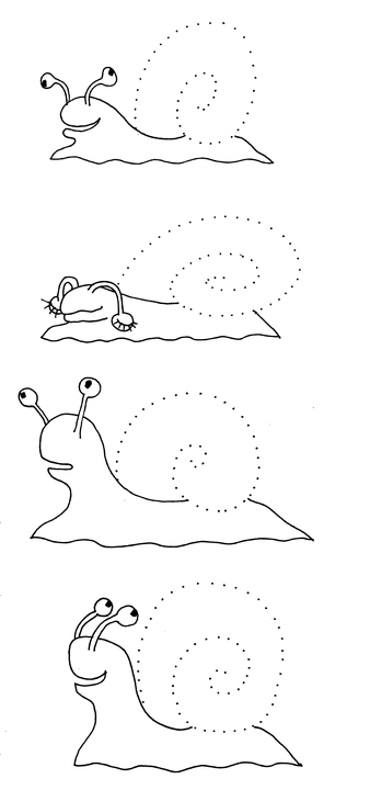 Siput Cacing Kulit Kerang Gambar Gratis Di Pixabay
