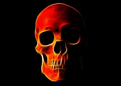 Totenkopf Bilder Pixabay Kostenlose Bilder Herunterladen