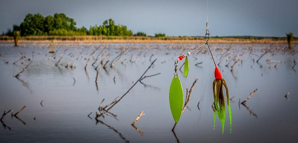 free photo: spinner bait, fishing lure, fishing - free image on, Fishing Bait
