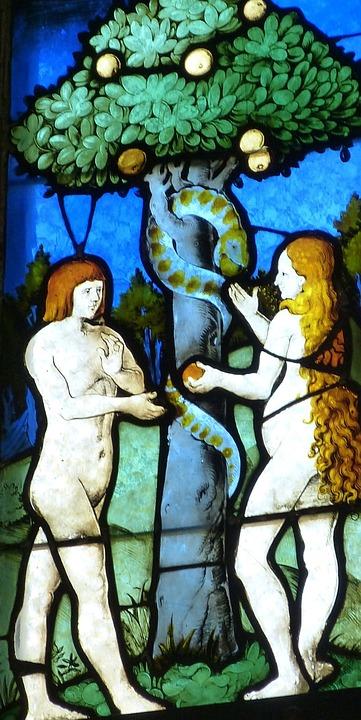 Adam Et Eve, Fenêtre De L'Église, Eglise, Fenêtre