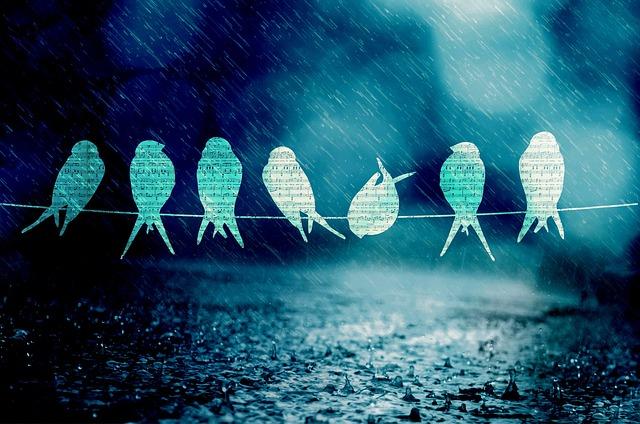 Birds Song Music · Free photo on Pixabay