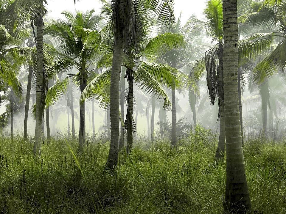 Rancho a una hora de Punta Cana