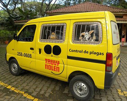 Pest Control, Mosquitoes, Insect, Rat