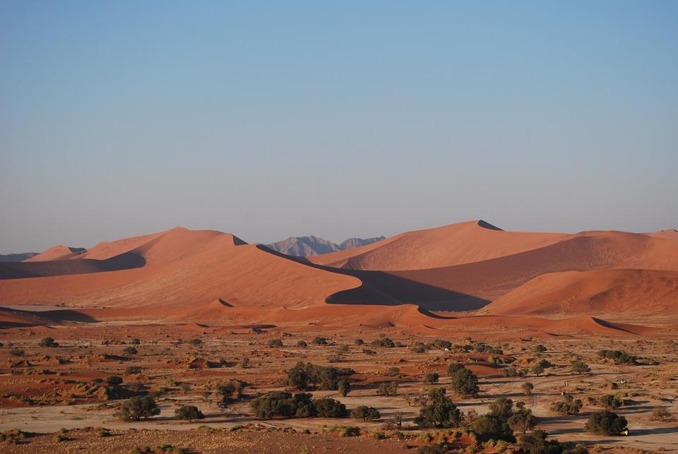 namibia-etosha-zyrafa-jeep