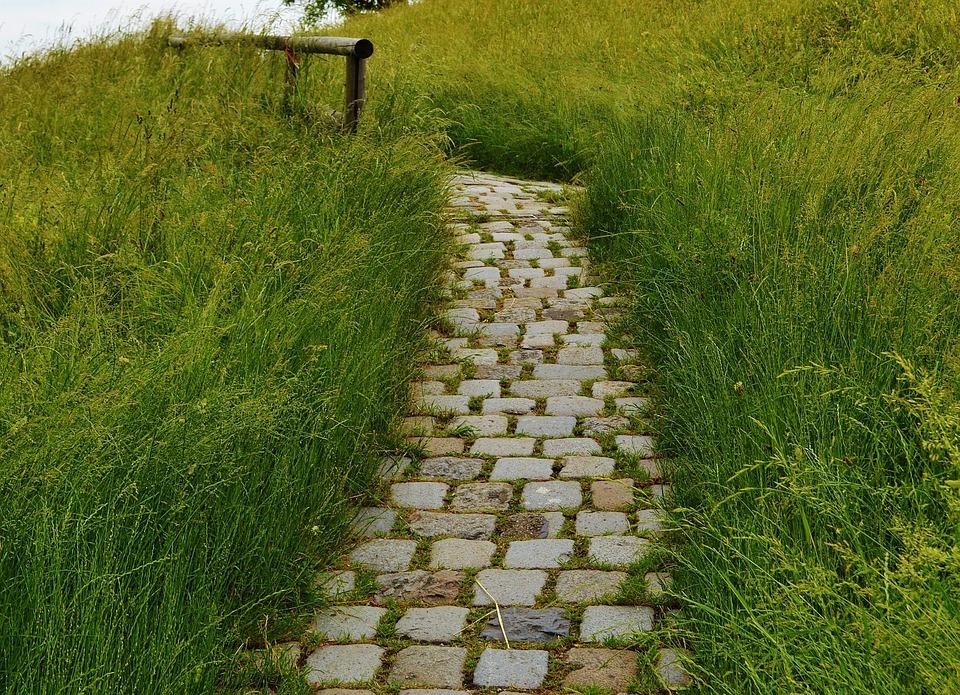 Foto gratis via prato natura percorso immagine - Gartenwege gestaltungsideen ...