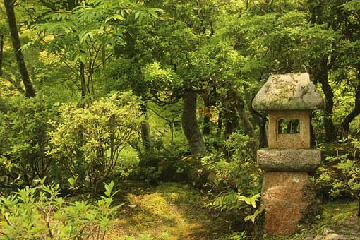 日本, 庭, 神社, 緑, 自然, 神社, 神社, 神社, 神社, 神社