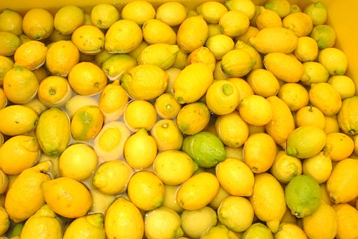 Zitronen, Sorrento, Italien, Limoncello