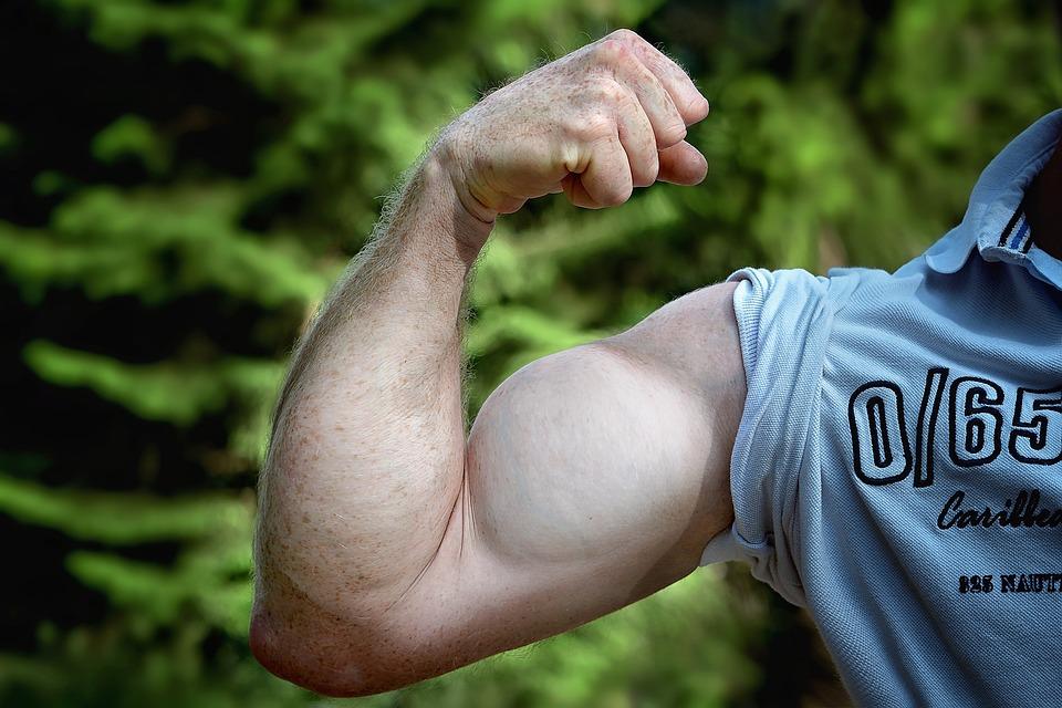 Muskeln Arm Bemuskelt · Kostenloses Foto auf Pixabay