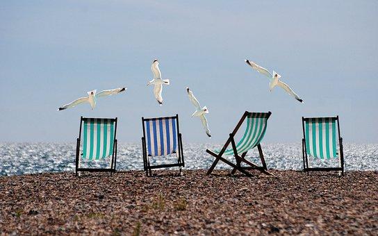 Strand, Meeuwen, Ligstoelen, Vliegen
