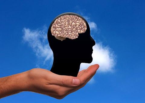 Hand, Keep, Head, Brain, Imitation