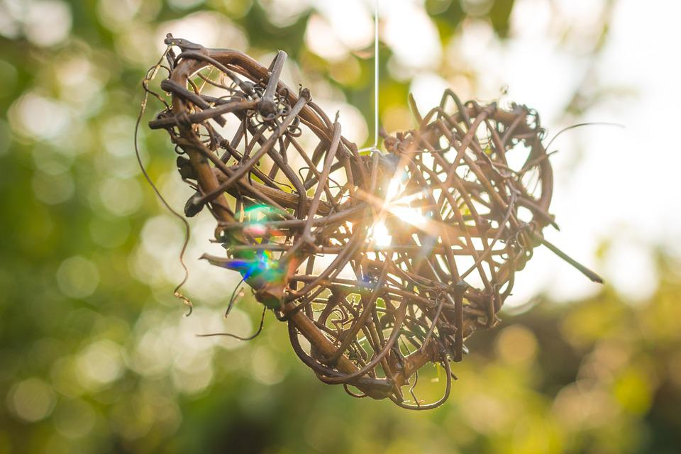 Free Photo: Heart, Branches, Wood, Love, Nature