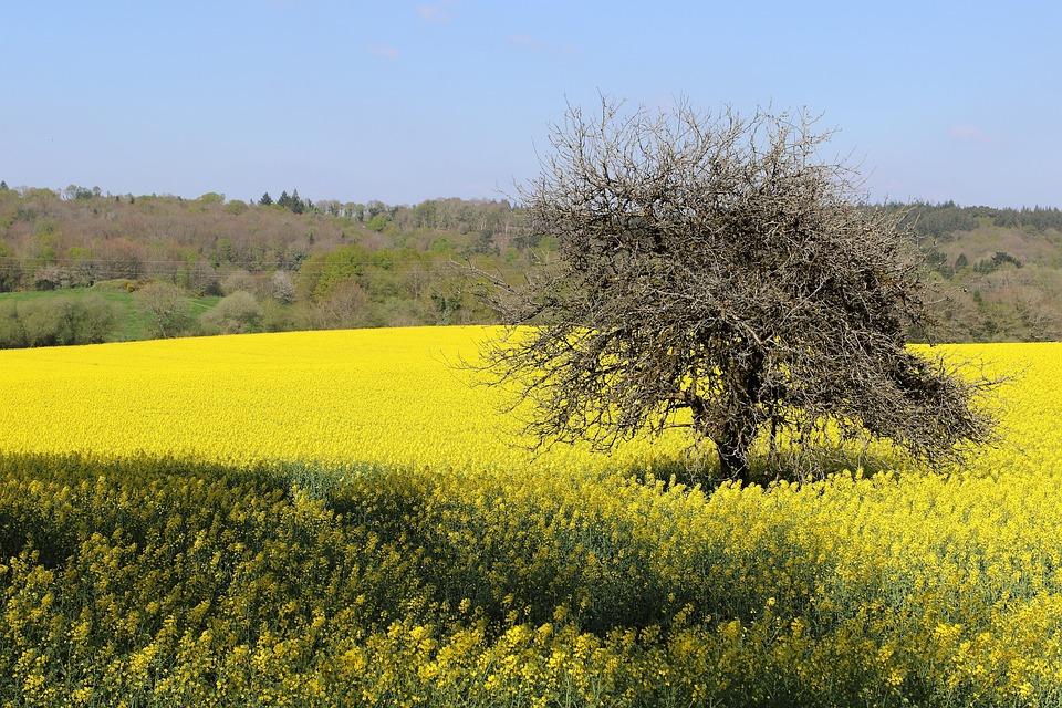 黄色撸管故事