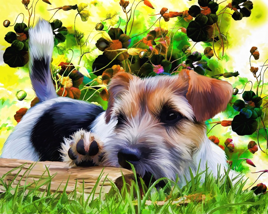 free illustration terrier, puppy, dog, flowers, cute  free image, Beautiful flower