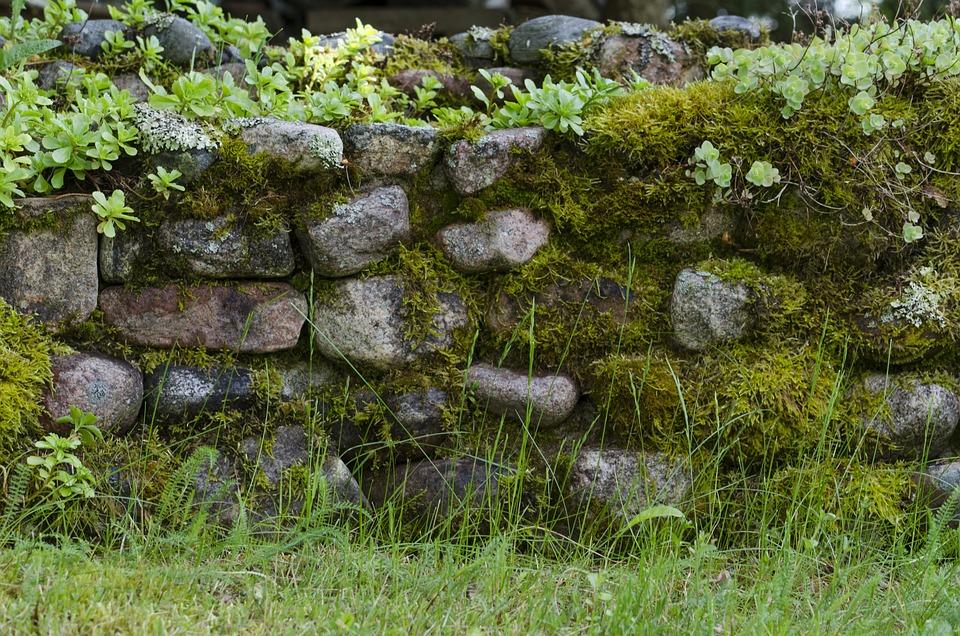 Stein Moos Garten Kostenloses Foto Auf Pixabay