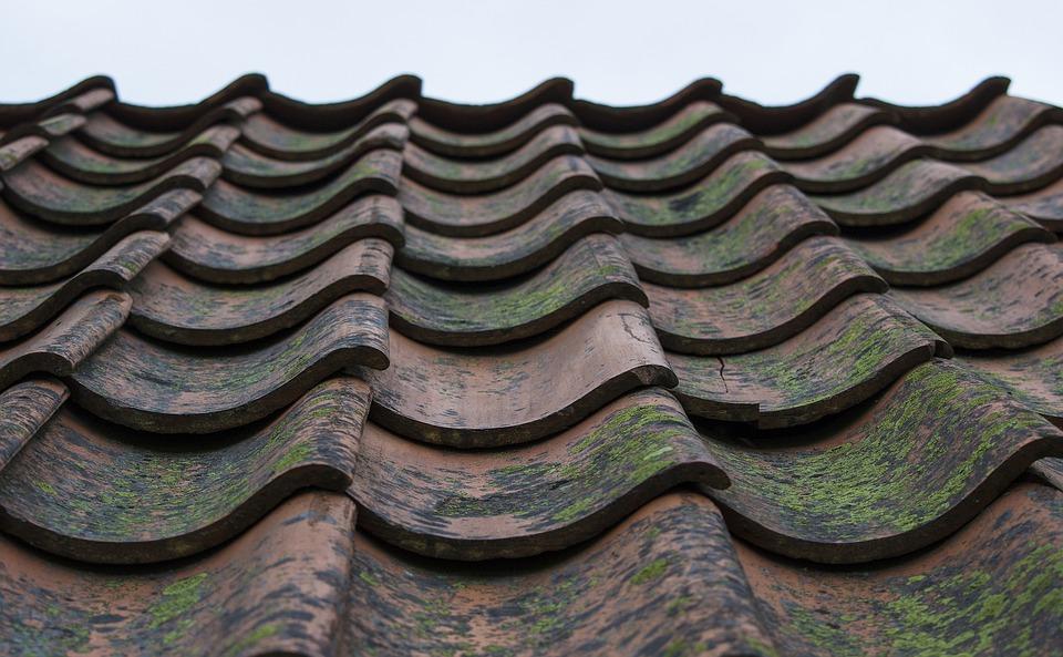 屋根, タイル, 屋根瓦, 単純なドーム型