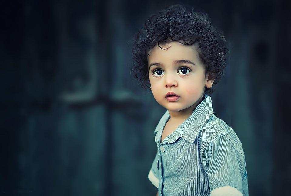 Child, Boy, Portrait, Children, People, Cute, Kids