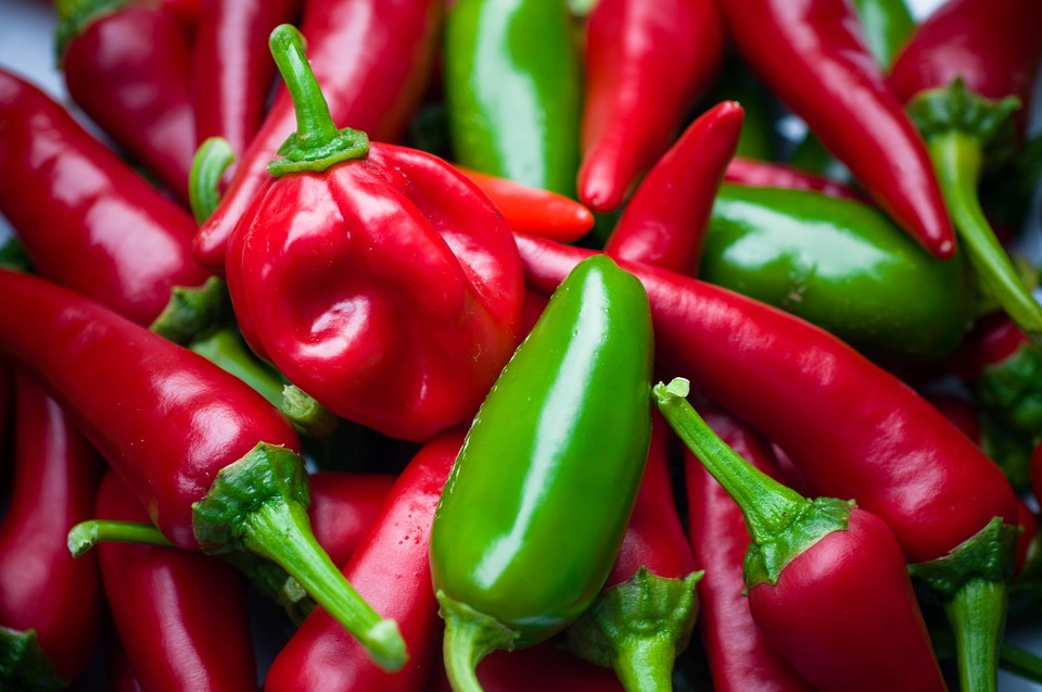 Chilli, Habanero, Sharp, Pods, Vegetables, Eat, Red