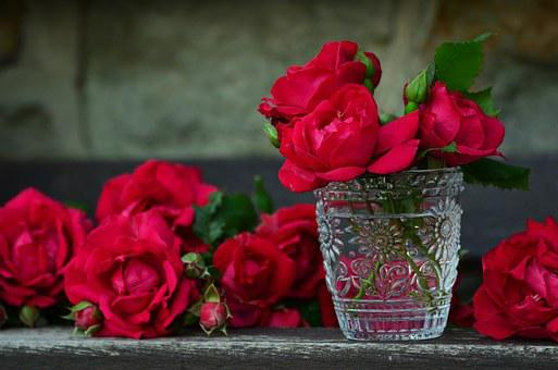 Bouquet of roses images pixabay download free pictures roses red roses bouquet of roses glass ros mightylinksfo
