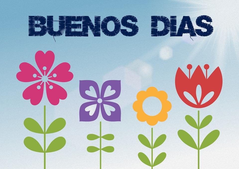 Frases Bom Dia Flores Imagens Grátis No Pixabay