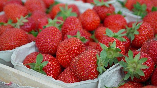 Strawberries, Berries, Fruit, Close Up