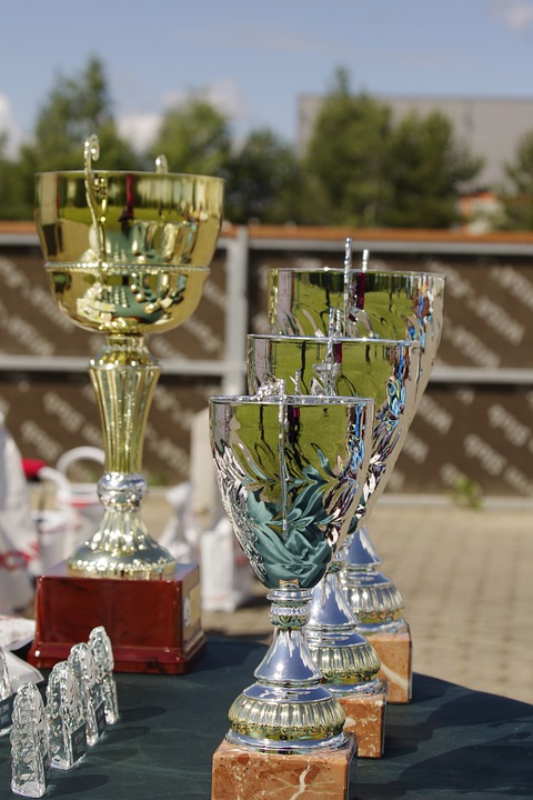 Prize, Competition, Trophy, Award