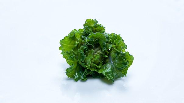 Flower Sprout, Vegetable, Brussel Sprout