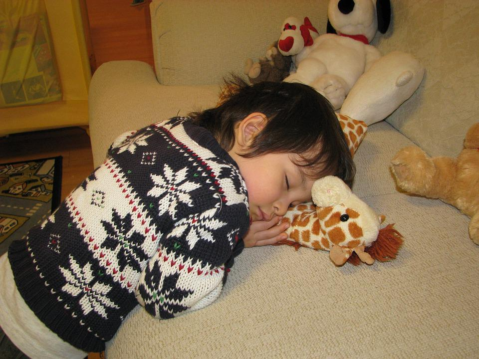 Sleeping, Boy, Tired, Sleep, Cute, Child, Kid, Resting