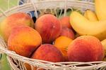 brzoskwinie, owoców, kosz z owocami