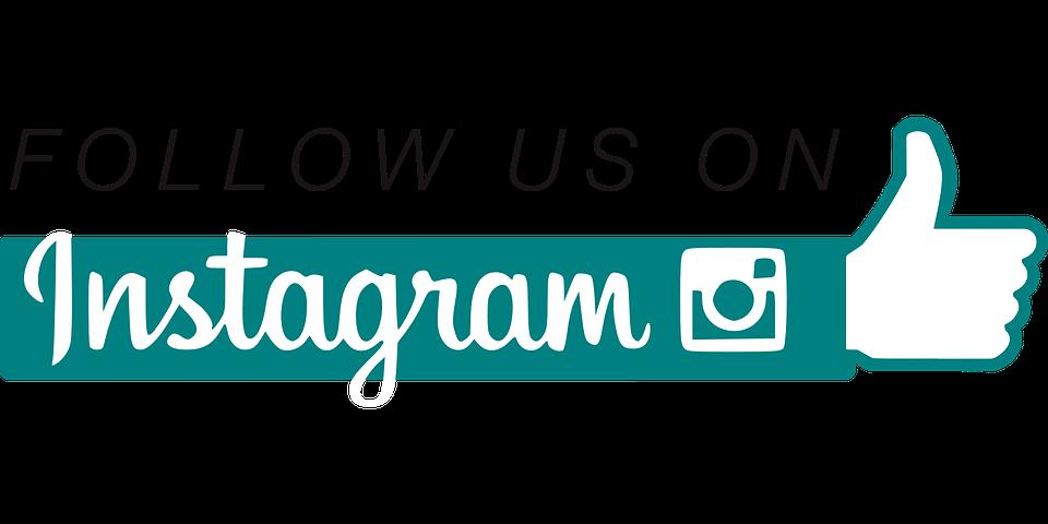 Folgen, Soziale Netzwerke, Vektor, Farbe, Instagram