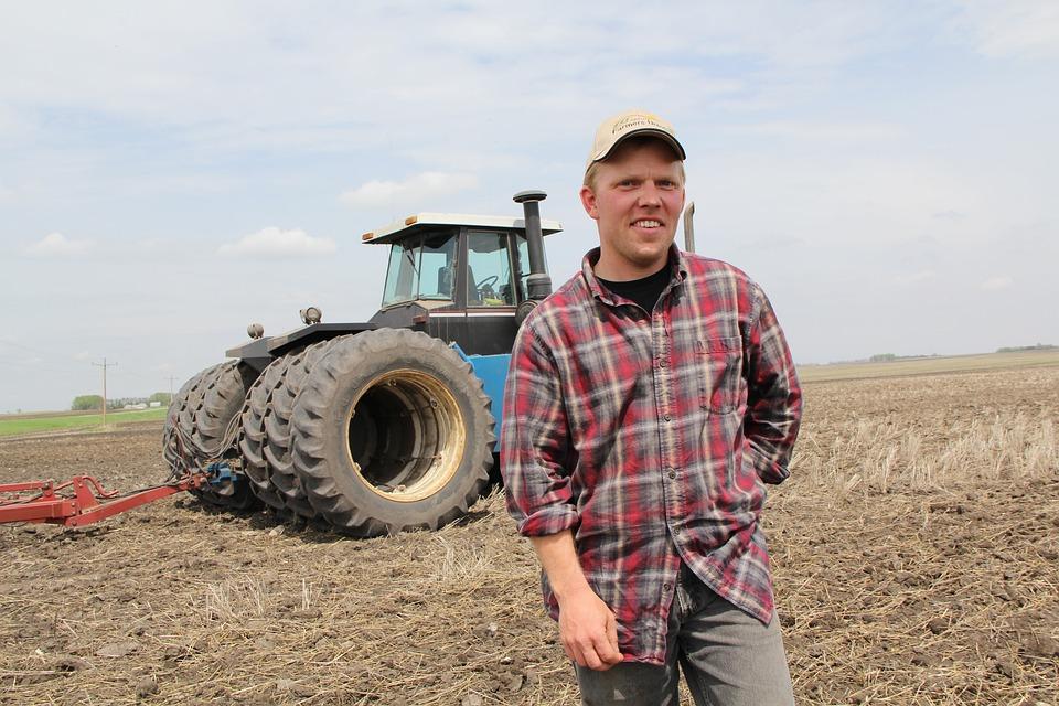 Agricultor, Tractor, Câmp, Agriculturã, Maºinã, Ruralã