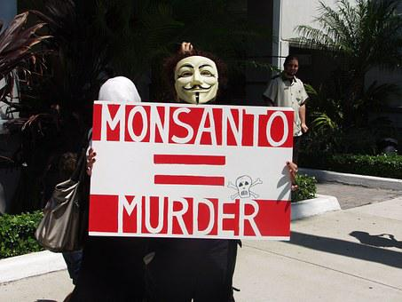 Protest, Anger, Gmo, Anomim, Mask