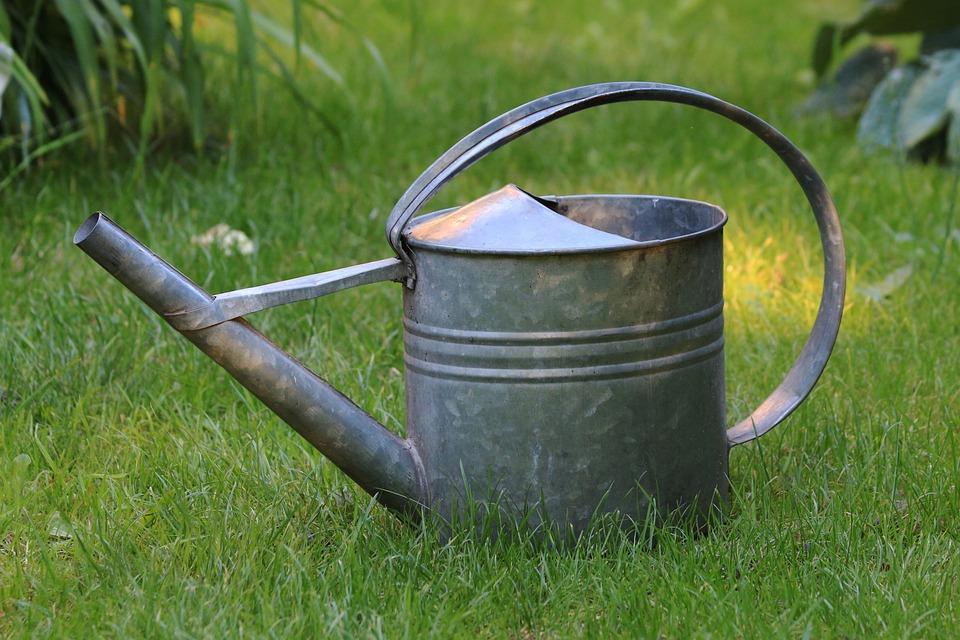 watering can garden grass