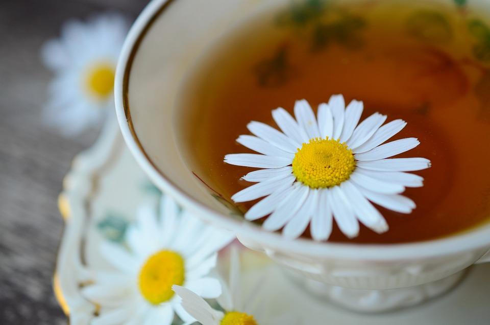 Výsledek obrázku pro heřmánek čaj