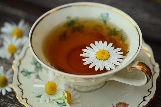 Chamomile, Chamomile Tea, Cup, Gold Edge