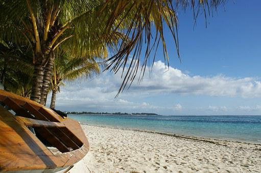 Ocean, Boat, Palm Tree, Clouds, Blue